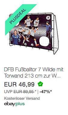 DFB Fußballtor 7 Wilde mit Torwand 213 cm zur WM 2018 - jetzt 24% billiger