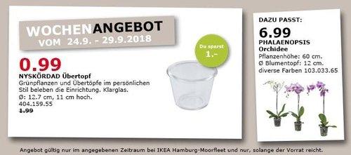 IKEA Hamburg-Moorfleet - NYSKÖRDAD Übertopf, Klarglas - jetzt 50% billiger