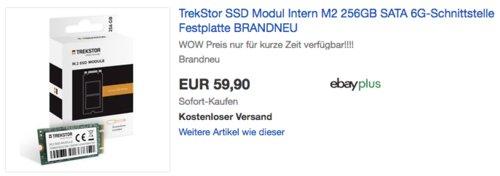 TREKSTOR M.2 SSD-Modul 256 GB, SSD-Festplatte - jetzt 23% billiger