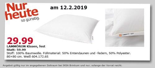 IKEA Brinkum - LAMMÖRON Kissen, fest, 80x80 cm - jetzt 50% billiger