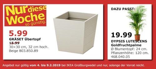 IKEA Großburgwedel - GRÄSET Übertopf, beige, 30x30x32 cm - jetzt 63% billiger